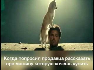 Когда попросил продавца рассказать о машине)))