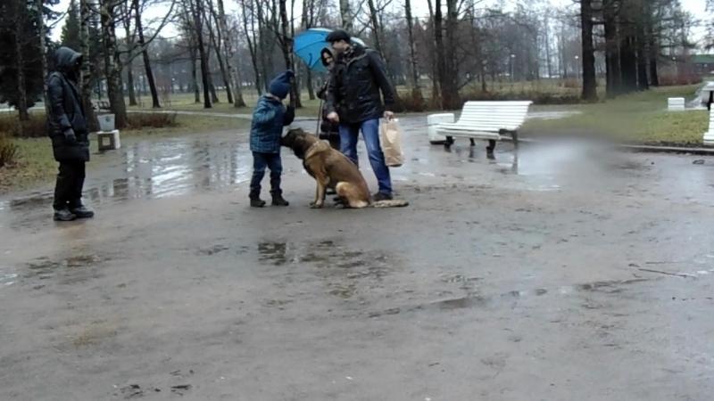 Илья в эпизоде Колыбель над бездной 10 04 14