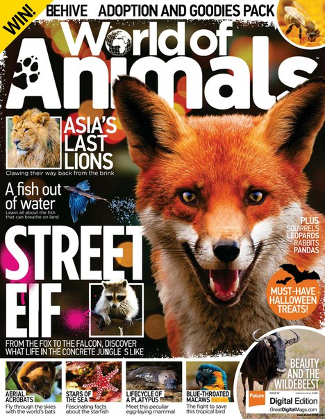 World of Animals UK 2017
