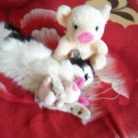 Куклина Оля