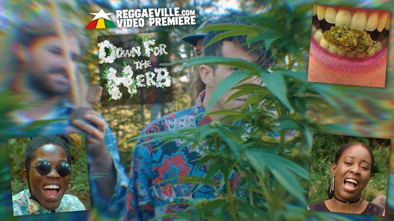 Dub Kartel feat. Blvk H3ro Jahmila - Down For The Herb [Official Video 2018]