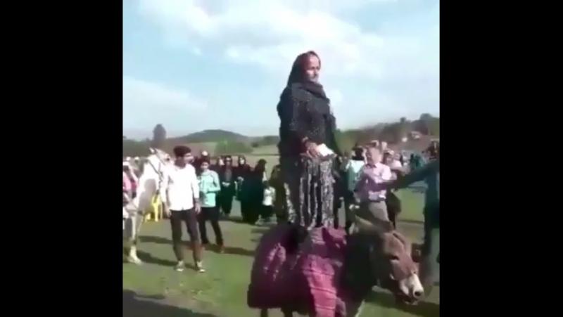 Эта бабушка зарабатывает дениги