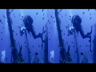 Ocean world 3d - side by side (sbs)