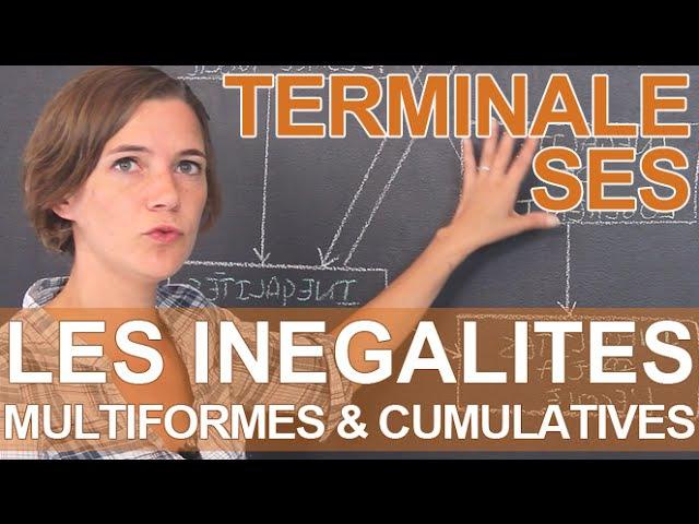 Pourquoi les inégalités sont multiformes et cumulatives SES Terminale Les Bons Profs
