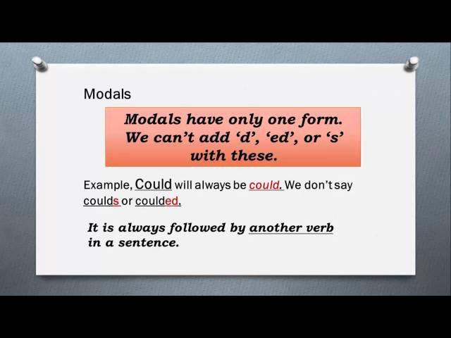 Auxillaries Modals Be Do Have English Grammar