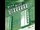Various Buzz Buzz Buzzzzzz Vol 2 The High Art Of Groovy 60s Psychedelic Instrumental Surf Music
