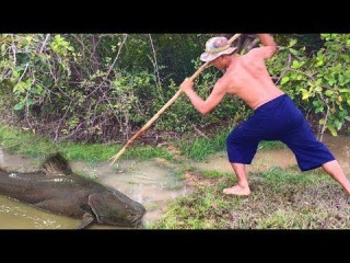 TOP Five 2017 - Amazing Man Make Fish Trap and Spearfishing HUGE Fish! Catch n Cook