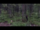 [FUNNY] Finnish man scares a bear away by shouting PERKELE [2017]