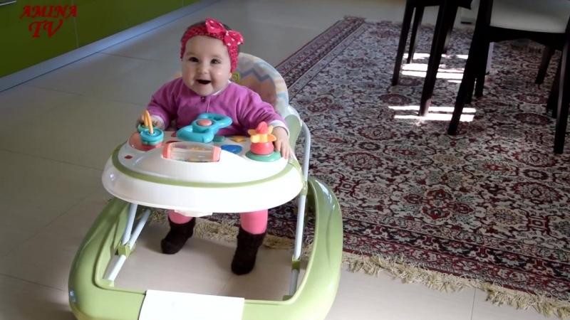 Ходунки Happy Baby от Уняша ПрокатУняша ходунки ходункиHB ходункиhappybaby