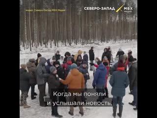 Орловский лес под топором чиновников