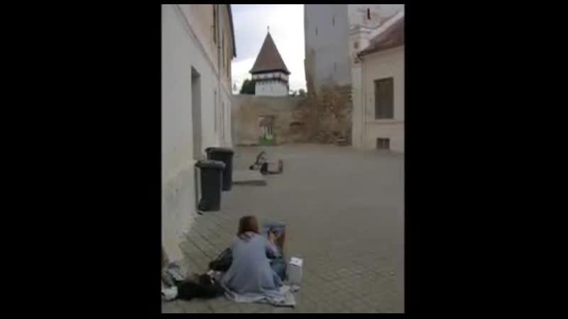 PRACTICA DE VARA DEALUL FRUMOS JUDETUL SIBIU ROMANIA