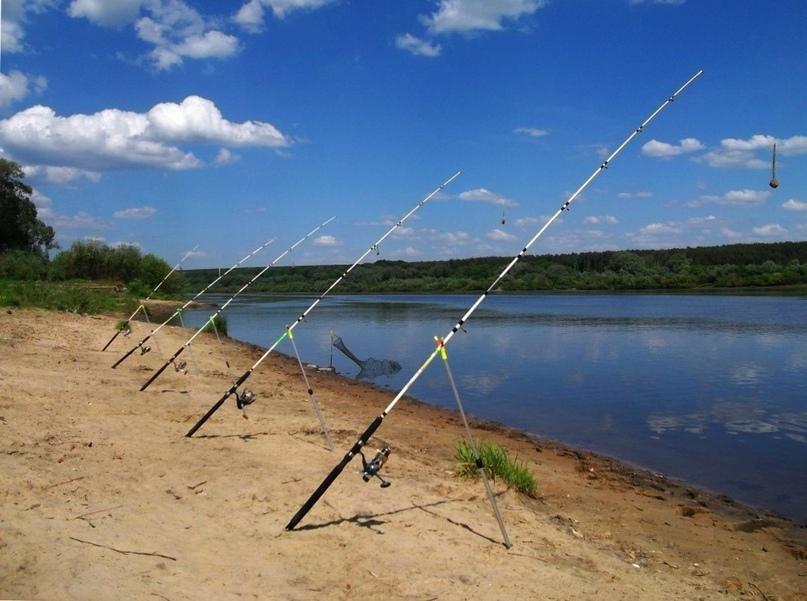 Вперед рыбачить!