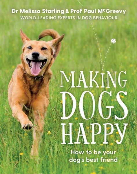 Making Dogs Happy The expert guide to being your dog 39 s best friend