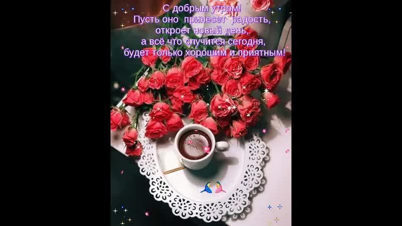 Doc143087628_509070630.mp4