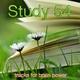 Exam Study Classical Music Orchestra & Breathe & Musica para Estudiar - Simplicity Spa