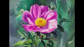 choeSSi art studio/ 최병화수채화/ 작약그리기/꽃그리기/tutorial of watercolor /how to paint flower-peony