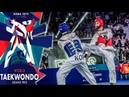 [Roma 2019 World Taekwondo Grand-Prix] M-68kg Final - LEE Dae-Hoon(KOR) vs HOSSEINI Mirhashem(IRI)