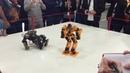 Лига роботов Бокс