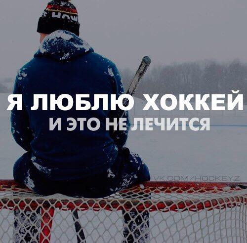 стихи хоккей вратарь луковый