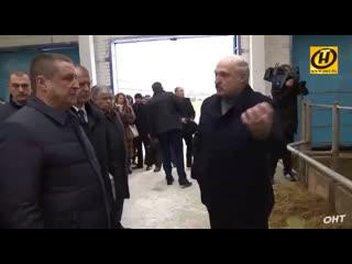 Лукашенко - Всех под нож! Увольнение губернатора