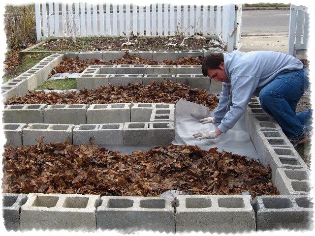Создание теплой грядки: осенние заботы о будущем урожае, изображение №2