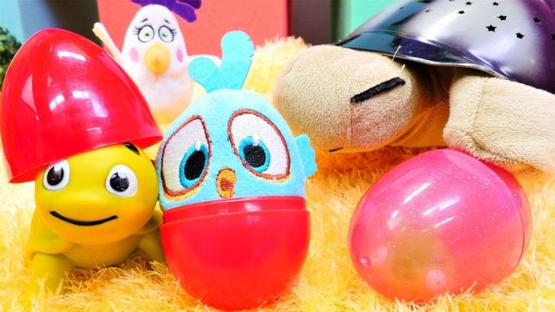 Angry Birds ve kaplumbağa yumurtaları karışıyor. Çizgi film oyuncakları