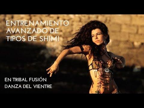 ENTRENAMIENTO DE TIPOS DE SHIMI EN BELLY DANCE Y EN TRIBAL FUSION COMPLETO PARA PRINCIPIANTES