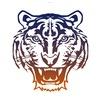 Клуб Tigris | ММА, Бокс, Кикбоксинг, Грепплинг.
