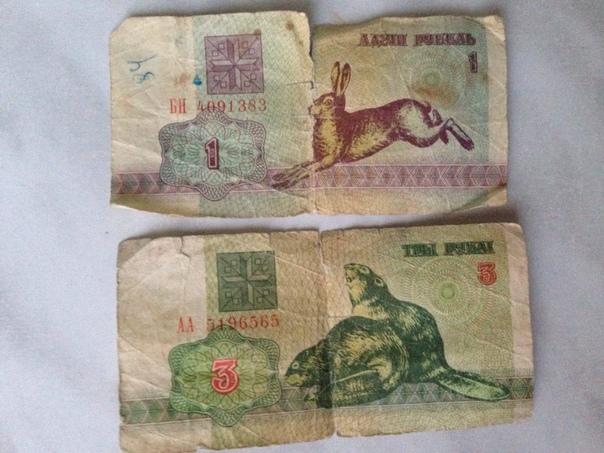 показать зайчики белорусские деньги фото есть холодильник, плита