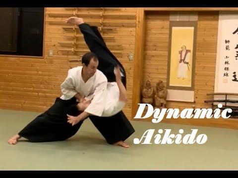 Dynamic Aikido Practice in Sendai