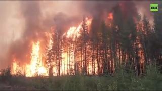 На линии огня: как спасатели на земле тушат лесные пожары в Красноярском крае