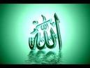 Свет пронзающий мрак в сути веры в Аллаха и неверии в тагута Часть 6 Абу Ханиф Абаза