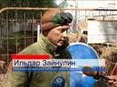 Теплоэнерго начало ремонт теплотрассы в парке им .Пушкина