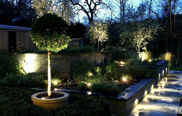Световые акценты в саду.