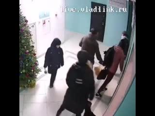 Во Владивостоке мужчина на глазах у ребенка напал на соседку и ее собак