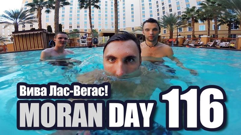 Moran Day 116 - Вива Лас-Вегас!