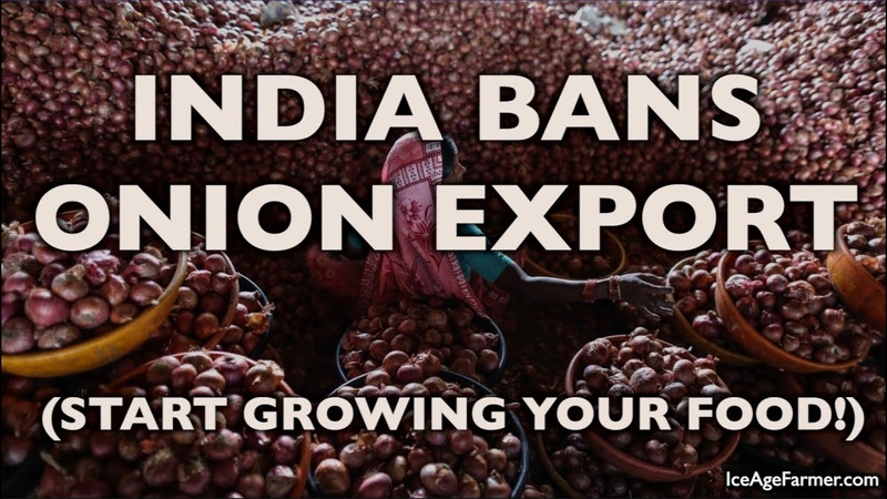 Ag Collapse: India BANS Onion Exports After Monsoon - Australian Rice/Drought - Eat Babies/MKUltra