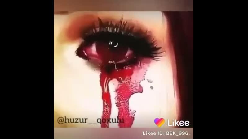 Like_6720894795740057056.mp4