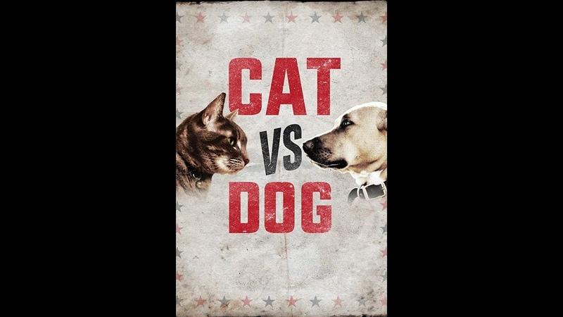Кошка против собаки Cat Vs Dog 2017 4 серия Animal Planet