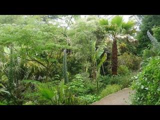 Beautiful Exotic Garden, Île de Batz, France