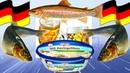 Маринованная селедка и форель по немецки HERINGSFILETS Легкие закуски на скорую руку