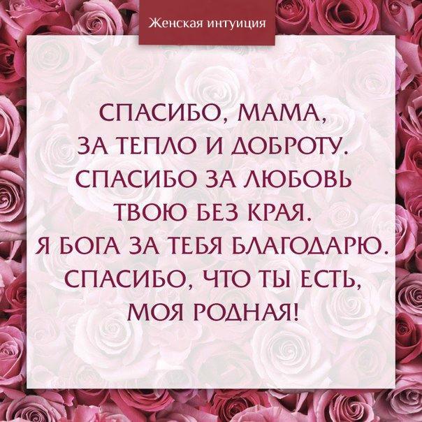 Гифки мама спасибо тебе за все