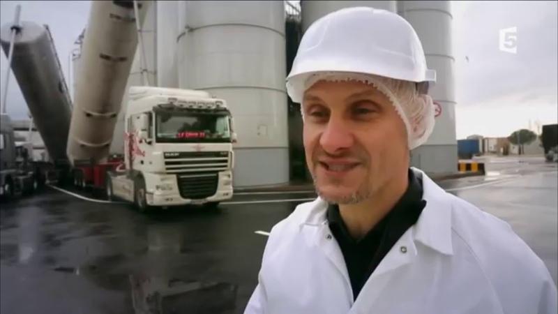 Visite de l usine de Royal Canin pas un gramme de viande fraî de la farine !