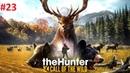 Прохождение: the Hunter Call of the Wild - Часть 23 Задание Коннорс 3