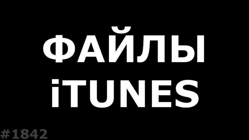 Где iTunes хранит свои файлы
