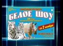 ЮБИЛЕЙНАЯ ПРОГРАММА «БЕЛОЕ ШОУ» со 2 ноября в Иркутском цирке