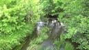 Липовый Донец река в Белгородском районе