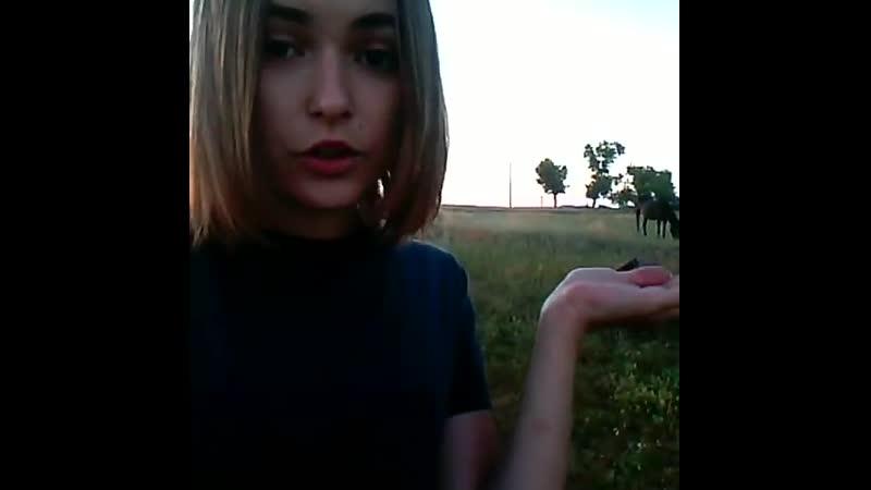 Кристишка в поле kristishka video