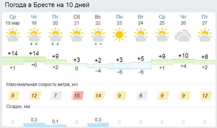 До +16°С ожидается по югу Беларуси 19 марта. А там и зима