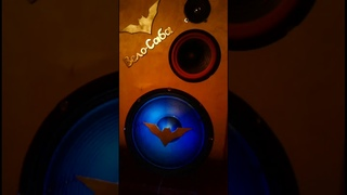 Sound Column Speaker 15 😨